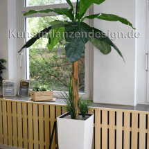 008_bananenpflanze_im_designgefaeß___210cm