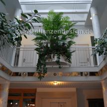007_areca-palmenbusch___h_200cm