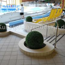009_pflanzbeckenbepflanzung_buchskugeln_im_schwimmbad